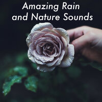 23 Amazing Rain and Nature Sounds. Ambient Rainfall for Sleep Meditation and Relaxing — Rain Sounds, Sleep Sounds Of Nature, Mother Nature Sound FX