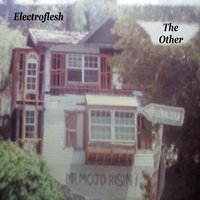 The Other — Electroflesh
