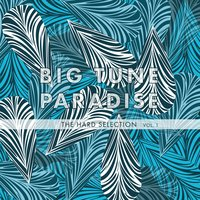 Big Tune Paradise - The Hard Selection, Vol. 1 — сборник