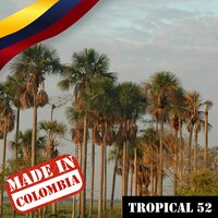 Made In Colombia / Tropical / 52 — сборник