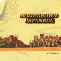 Homegrown Istanbul, Vol. 1 — сборник
