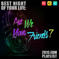 Are We Your Friends? Best Night of Your Life: 2015 EDM Playlist — сборник