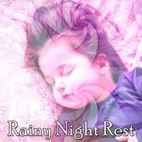 Rainy Night Rest — Rain Sounds Sleep