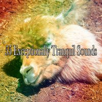 55 Exceptionally Tranquil Sounds — White Noise for Baby Sleep