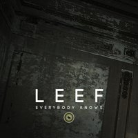 Everybody Knows — Leef