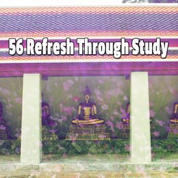 56 Refresh Through Study — Massage Therapy Music