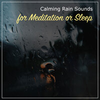 19 Calming Rain Sounds for Meditation or Sleep — Nature Soundscape, Organic Nature Sounds, Natural Nature Makers
