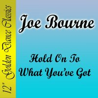 Hold on to What You've Got — Joe Bourne