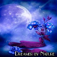 Dreamer by Nature — Danny Hay