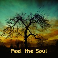 Feel the Soul — Paul Lenart, Larry Luddecke