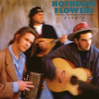 People — Hothouse Flowers
