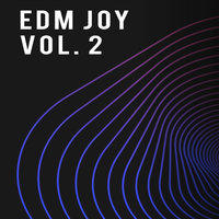 EDM Joy, Vol. 2 — сборник