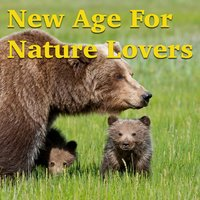 New Age For Nature Lovers — сборник