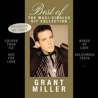 Best Of - The Maxi-Singles Hit Collection — GRANT MILLER