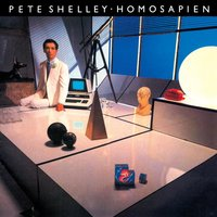 Homosapien — Pete Shelley