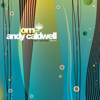 Warrior - Featuring Lisa Shaw — Andy Caldwell