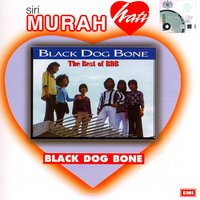 The Best Of Bdb — Black Dog Bone
