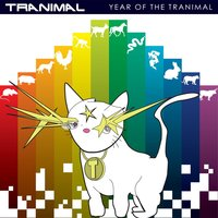 Year of the Tranimal — Tranimal