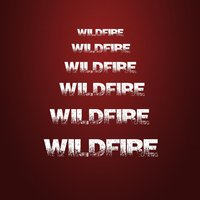 Wildfire — Everbe