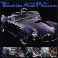Throttle and Pistons LP — Ted Ansani