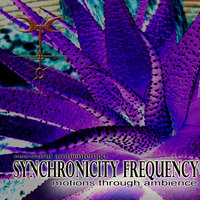 Motions Through Ambience — Synchronicity Frequency