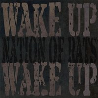 Wake Up Wake Up — Nation of Rats