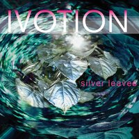 Silver Leaves — Ivotion