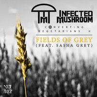 Fields of Grey — Infected Mushroom feat. Sasha Grey