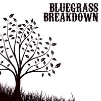 Bluegrass Breakdown — сборник