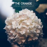 Dana Matanga - Single — The Orange