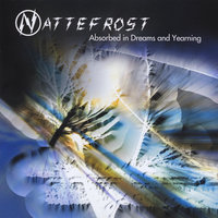 Absorbed in Dreams and Yearning — Nattefrost
