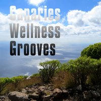 Canaries Wellness Grooves — сборник