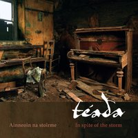 In Spite of the Storm — Téada