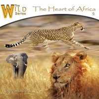 The Heart of Africa — Wychazel