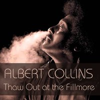 Thaw Out At the Fillmore — Albert Collins