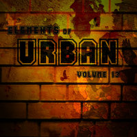 Elements Of Urban Vol.13 — Blackface