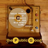 A Varied Program of Stereo Dynamics For Your Wild Nights Alone — The Public Good