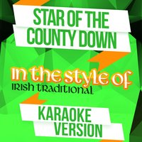 Star of the County Down (In the Style of Irish Traditional) - Single — Ameritz Audio Karaoke