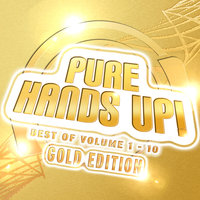 Mental Madness Pres. Pure Hands Up! Gold Edition (Das Beste Aus 10 Volumes) — сборник