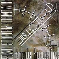 Remember Precious Times — Sly & Robbie