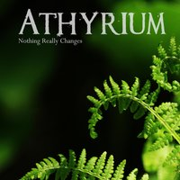 Nothing Really Changes — Athyrium
