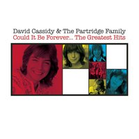 Could It Be Forever - The Greatest Hits — David Cassidy, The Partridge Family, David Cassidy & The Partridge Family