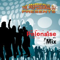 The Polonaise Mix — The Professional DJ
