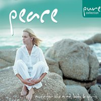 Pure Peace… Music for the Mind, Body & Spirit — The Sign Posters