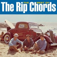 The Best Of The Rip Chords — The Rip Chords