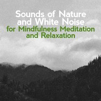 Sounds of Nature and White Noise for Mindfulness, Meditation and Relaxation — Sounds of Nature White Noise for Mindfulness, Meditation and Relaxation