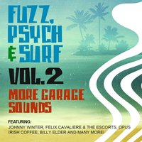 Fuzz, Psych & Surf, Vol. 2 - More Garage Sounds — сборник