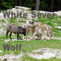 Wolf — White Sever