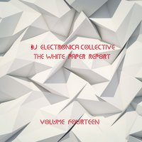 DJ Electronica Collective: The White Paper, Vol. 14 — сборник