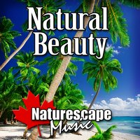 Natural Beauty (Nature Sound with Music) — Naturescape Music